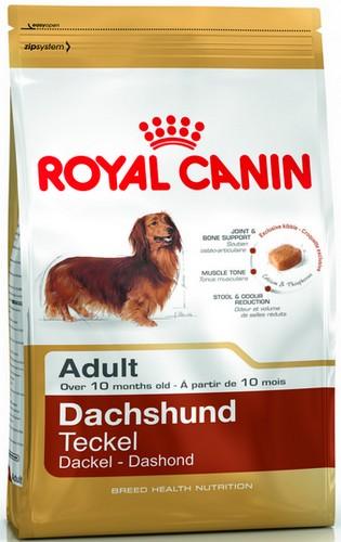 Royal Canin Dachshund Adult karma sucha dla psów dorosłych rasy jamnik 1