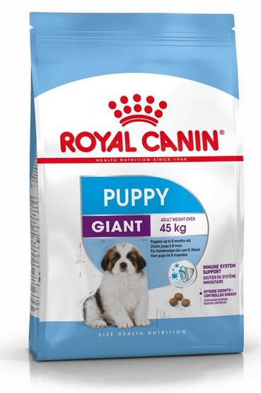 Royal Canin Giant Puppy karma sucha dla szczeniąt