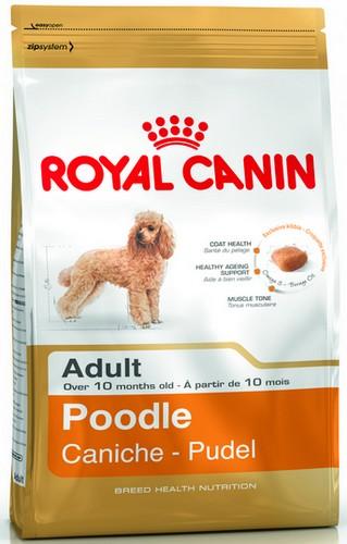 Royal Canin Poodle Adult karma sucha dla psów dorosłych rasy pudel miniaturowy 1